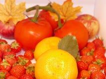 Fruto do verão Fotografia de Stock Royalty Free
