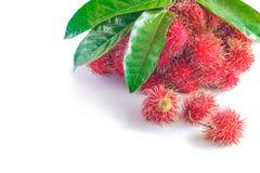 Fruto dos Rambutans com folha Imagem de Stock