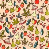 Fruto e bagas Foto de Stock