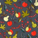 Fruto e bagas Imagens de Stock
