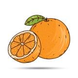 Fruto e fatias alaranjados no fundo branco Fotografia de Stock Royalty Free