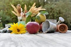 Fruto e flor em uma tabela Imagem de Stock Royalty Free