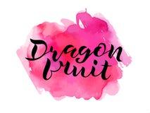 Fruto escrito à mão do dragão da rotulação na aquarela foto de stock
