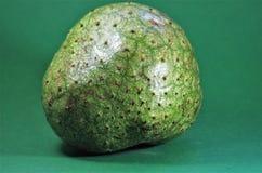 Fruto exótico das Honduras do verde de Guanabana Foto de Stock Royalty Free