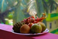 Fruto exótico tropical imagem de stock