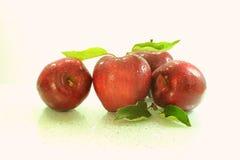Fruto fresco da maçã Imagens de Stock Royalty Free
