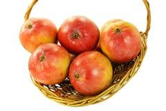 Fruto fresco da manga na cesta Foto de Stock Royalty Free