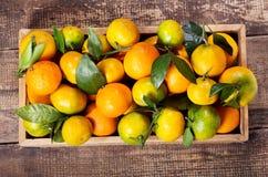Fruto fresco das tanjerinas na caixa de madeira Fotos de Stock Royalty Free