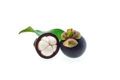Fruto fresco do mangustão Fotografia de Stock