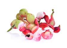 Fruto fresco do tamarindo de manila isolado no branco Foto de Stock