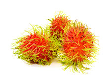 Fruto fresco no fundo branco, fruto do rambutan de Ásia Foto de Stock Royalty Free