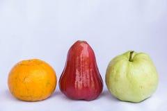 Fruto limpo cor-de-rosa vermelho fresco da maçã, a alaranjada e a verde da goiaba Foto de Stock Royalty Free