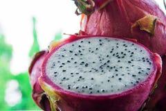 Fruto maduro tropical do dragão fotos de stock royalty free