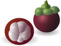 Fruto o mais mangiest fresco natural Ilustração do Vetor