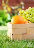 Fruto orgânico dos alimentos frescos da cesta do piquenique bio Fotos de Stock