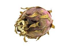 Fruto podre do dragão isolado Imagem de Stock Royalty Free