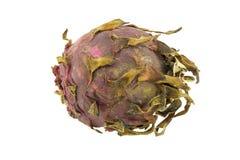 Fruto podre do dragão isolado Imagens de Stock Royalty Free