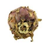 Fruto podre do dragão isolado Imagem de Stock