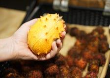Fruto pontudo de Kiwano do africano Foto de Stock
