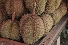 Fruto quente dos durians da compra em Tailândia Imagem de Stock Royalty Free