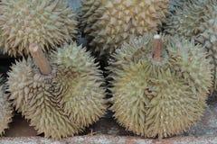 fruto quente dos durians em Tailândia Imagem de Stock Royalty Free