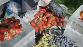Fruto sortido dos mirtilos dos pêssegos do abricó da morango da pera de uva no gelo O conceito da nutri??o diet?tica saud?vel filme