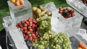 Fruto sortido dos mirtilos dos pêssegos do abricó da morango da pera de uva no gelo O conceito de uma dieta saud?vel video estoque