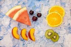 Fruto sortido no gelo Foto de Stock