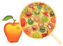 Fruto sujo, sob o microscópio ilustração stock