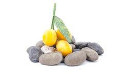 Fruto tailandês da ameixa mariana doce do close up isolado no fundo branco Imagem de Stock Royalty Free