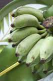 Fruto tropical da banana Foto de Stock