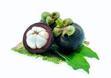 Fruto tropical do mangustão no fundo branco Imagem de Stock Royalty Free