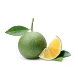 Fruto tropical: Isolado da laranja doce no fundo branco Foto de Stock Royalty Free
