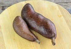 Fruto tropical Jatoba Imagem de Stock