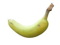 Fruto verde da banana Fotos de Stock