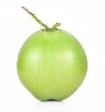 Fruto verde do coco isolado no fundo branco Fotos de Stock Royalty Free