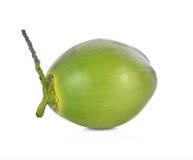 Fruto verde do coco no fundo branco Imagem de Stock