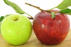 Fruto verde e vermelho da maçã Fotografia de Stock