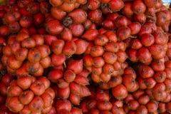 Fruto vermelho do salak no mercado de Tailândia Fotografia de Stock