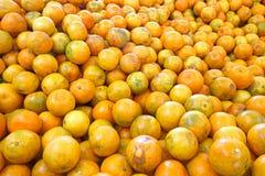 Frutos alaranjados encerados e espera para ser empacotado fotografia de stock