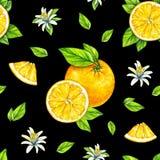 Frutos alaranjados maduros com folhas verdes Desenho da aguarela Handwork Fruta tropical Alimento saudável Teste padrão sem emend ilustração stock