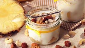 Frutos antioxidantes caseiros do verão Iogurte do leite natural Th Foto de Stock