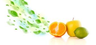 Frutos coloridos com as folhas orgânicas verdes Fotos de Stock Royalty Free