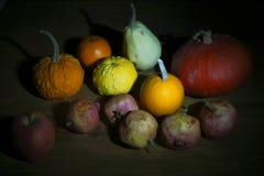 Frutos coloridos na obscuridade imagem de stock