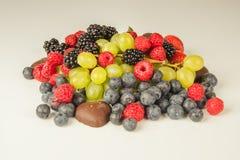 Frutos com chocolate Foto de Stock Royalty Free