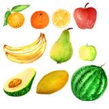 Frutos da aquarela ajustados ilustração stock