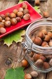 Frutos da avelã Imagem de Stock Royalty Free