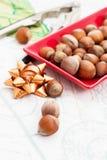 Frutos da avelã Fotos de Stock Royalty Free