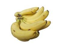 Frutos da banana isolados no branco Imagens de Stock