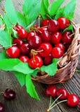 Frutos da cereja em uma cesta Fotos de Stock